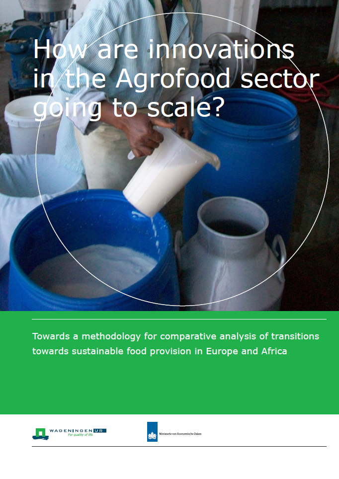 LEI Project Brief AgriFood Sector Going to scale